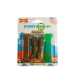 Nylabone Puppy Dental Pack