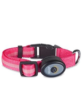 Elive LED Dog Collar Pink Small