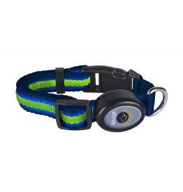 Elive LED Dog Collar Blue/Green Medium