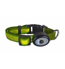 Elive LED Dog Collar Green Small/Medium