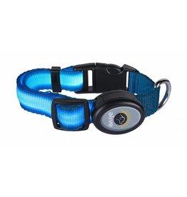 Elive LED Dog Collar Lt Blue Sm/Med