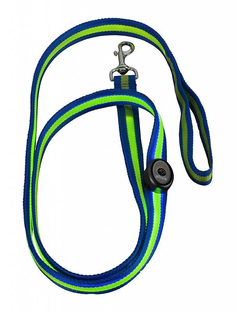 Elive LED Dog Leash 6' Blue/Green