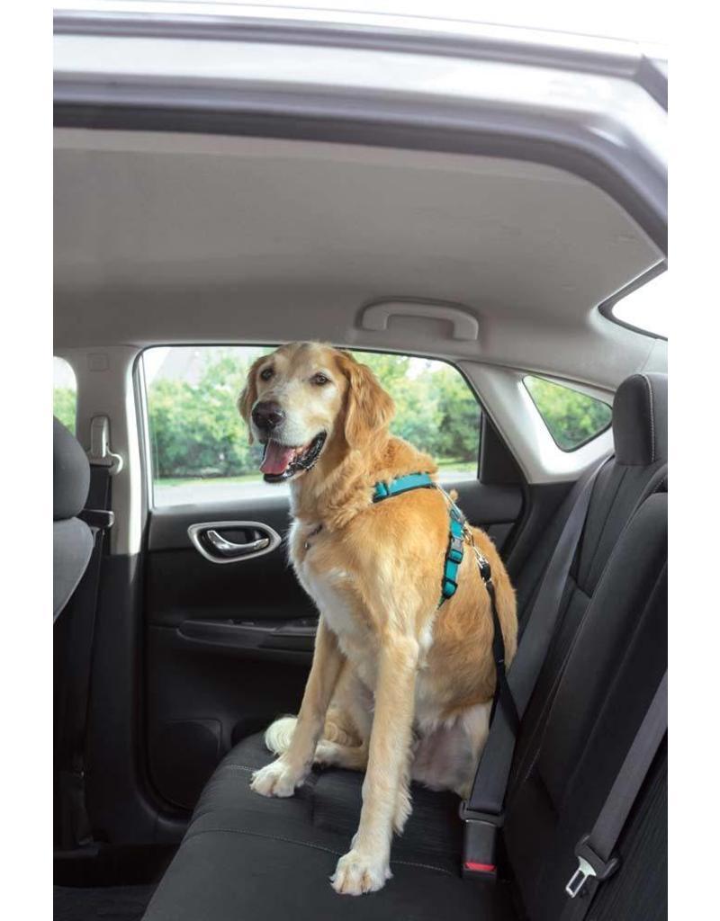 PetSafe 3 in 1 Dog Harness Large Teal