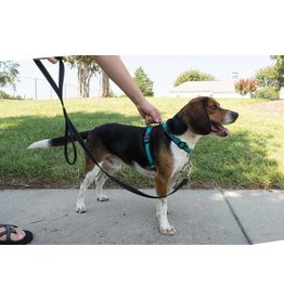 PetSafe 3in1 Dog Harness Medium