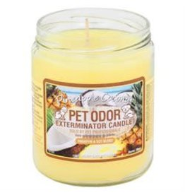 Specialty Pet Products Odor Exterminator Candle Pineapple Coconut