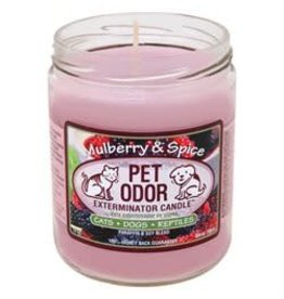 Specialty Pet Products Odor Exterminator Candle Mulberry & Spice