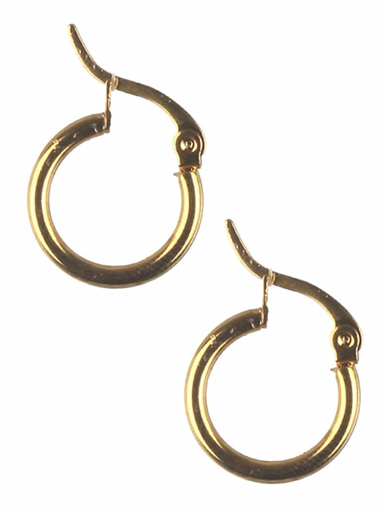Small Stainless Steel Gold Hoops
