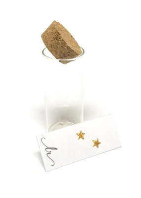 18K Gold Plated Sterling Star Earrings In A Bottle