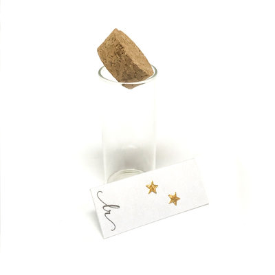 18K Gold Plated Sterling Star Earrings In A Bottle