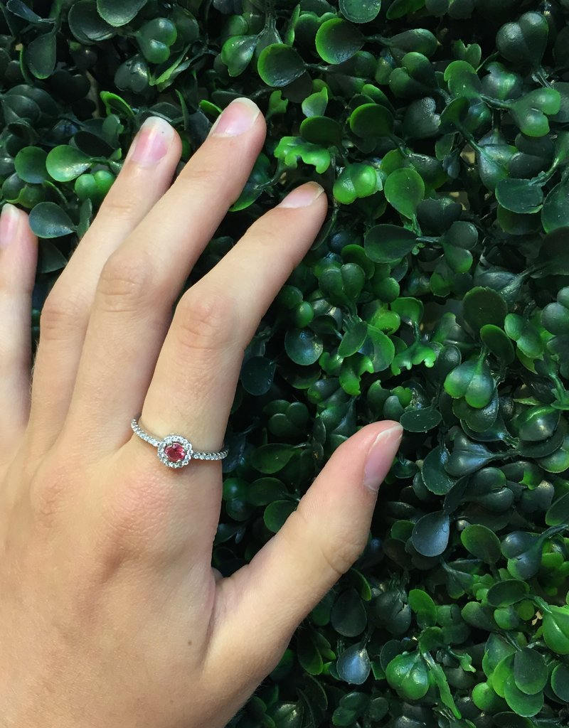 Sterling Silver Halo Ruby & Clear CZ Ring