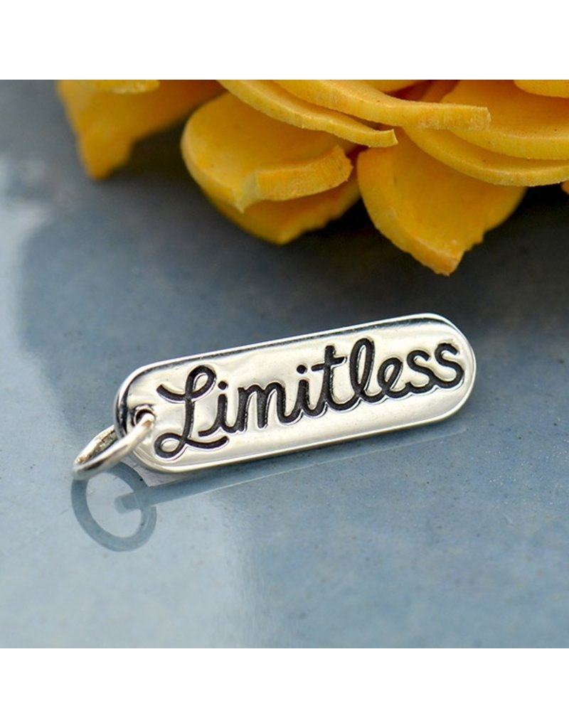 Sterling Silver Limitless Charm