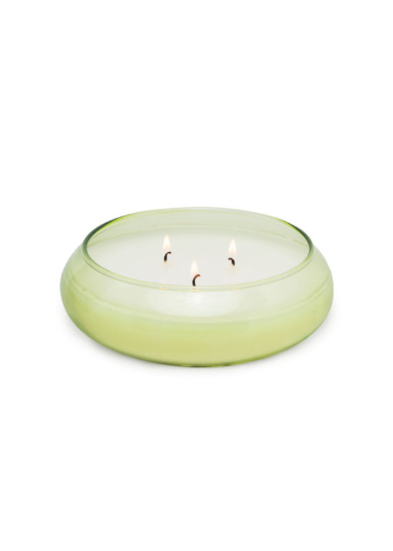 Paddywax Realm Bamboo 13.5 oz Candle