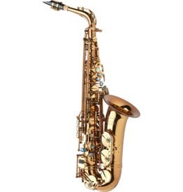 P. Mauriat P. Mauriat System 67 Professional Alto Saxophone