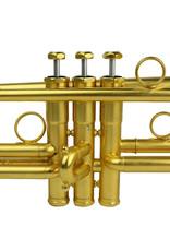Schilke Schilke X3 Bb Trumpet Gold Plate w/ Beryllium Bell
