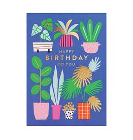 Calypso cards plants happy birthday card