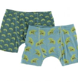 kickee pants ivy mini trees and neptune gingko boxer briefs set
