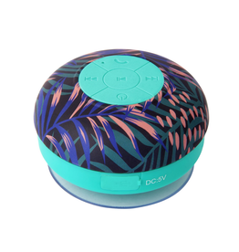 bloom shower speaker