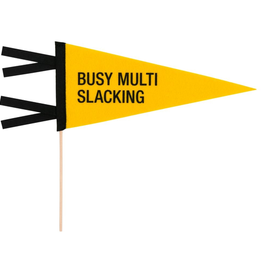 multi slacking pennant FINAL SALE