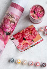 pink picasso kit