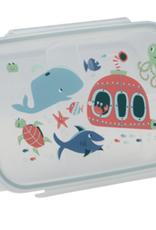 ocean lunch bento box