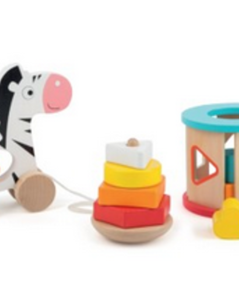 zebra skills toy set