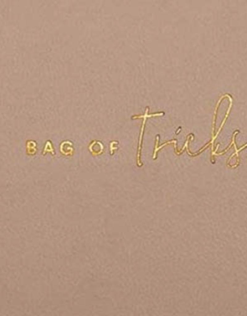 color pop makeup bag- bag of tricks