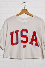 LivyLu usa distressed heart cropped tee