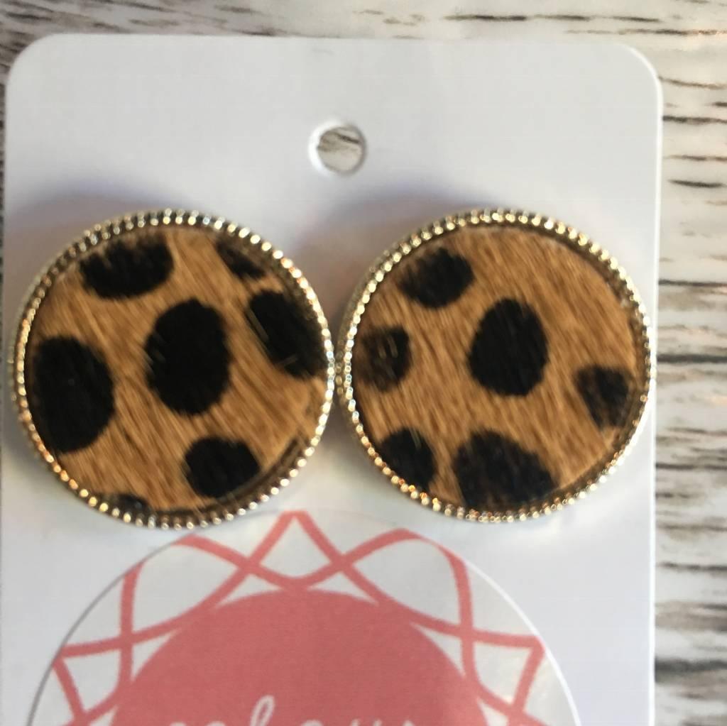 Leopard Discs