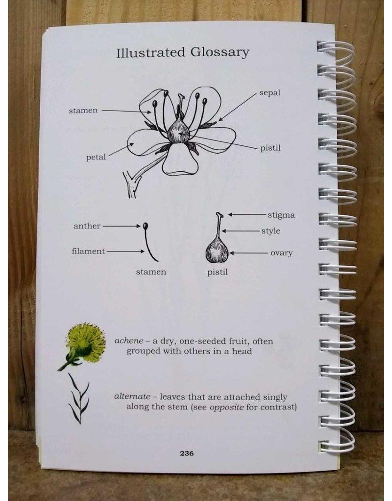 Book, Mount Shasta Wildflowers