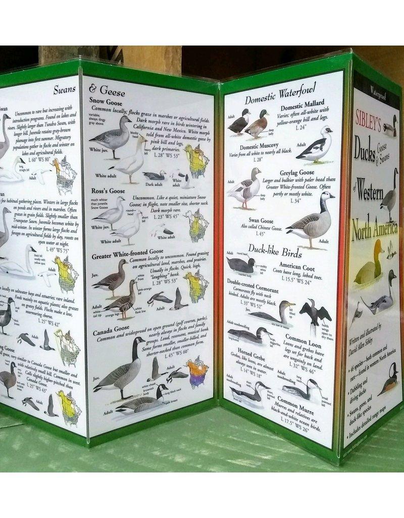 Sibley's, Ducks, Geese, & Swans of Western N. America, Quick Guide