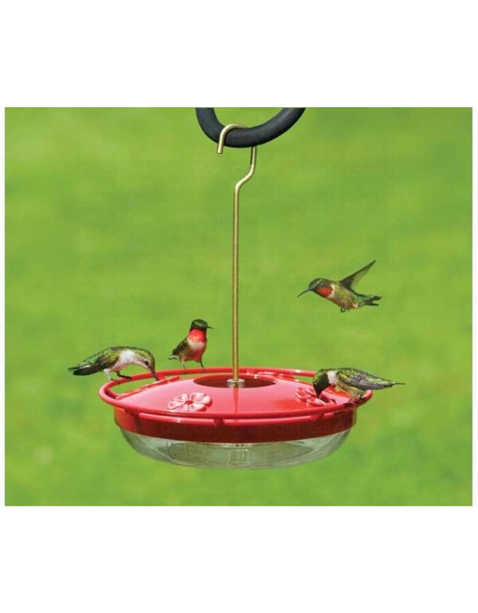 Hummingbird Feeder, Hummzinger High View, 12 oz. ASPECTS429