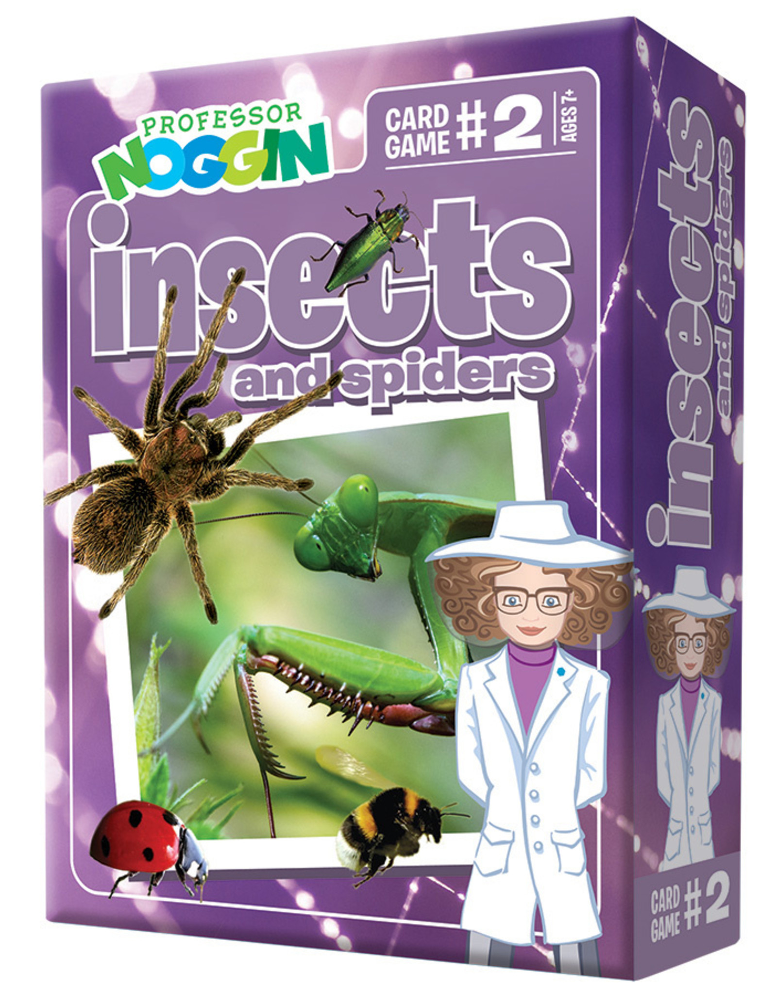 Professor Noggin Game, Cards, Insects and Spiders, Prof Noggins