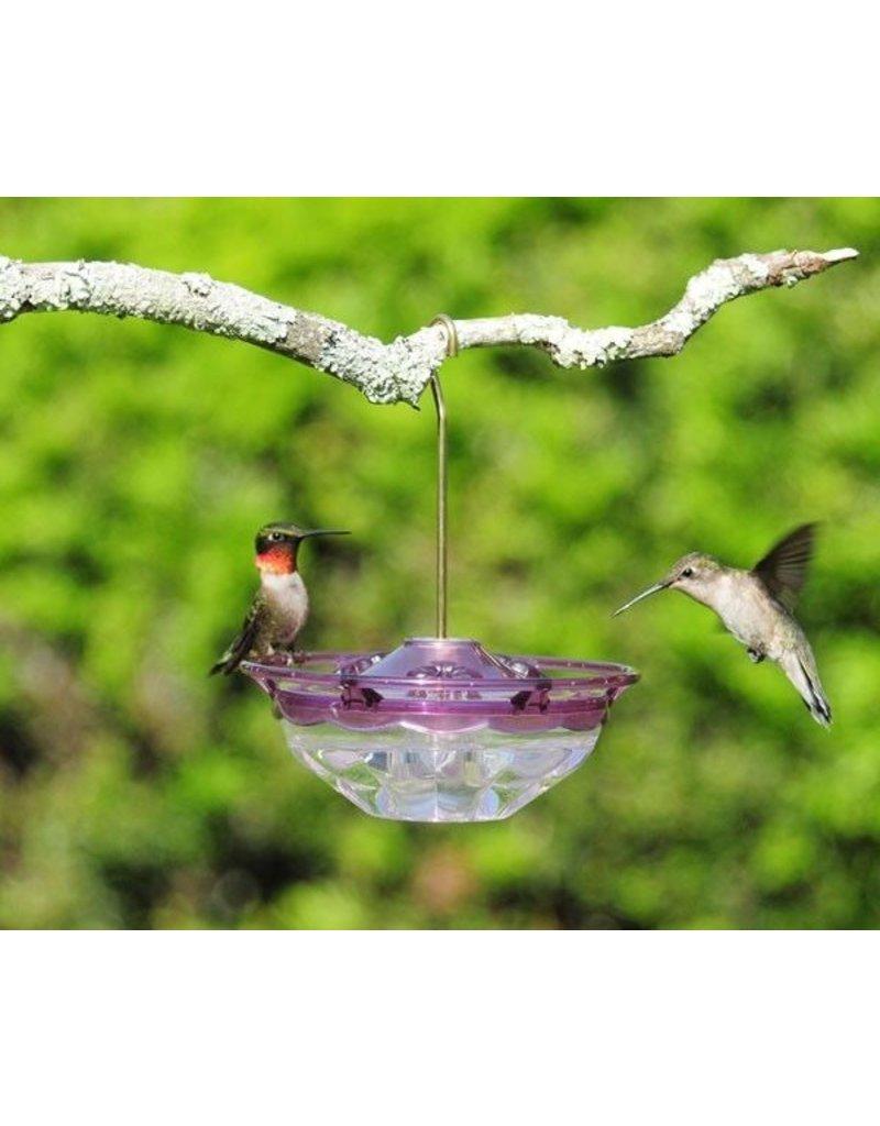 Aspects Hummingbird Feeder, Humm Blossom, Plum, 4oz., ASPECTS434