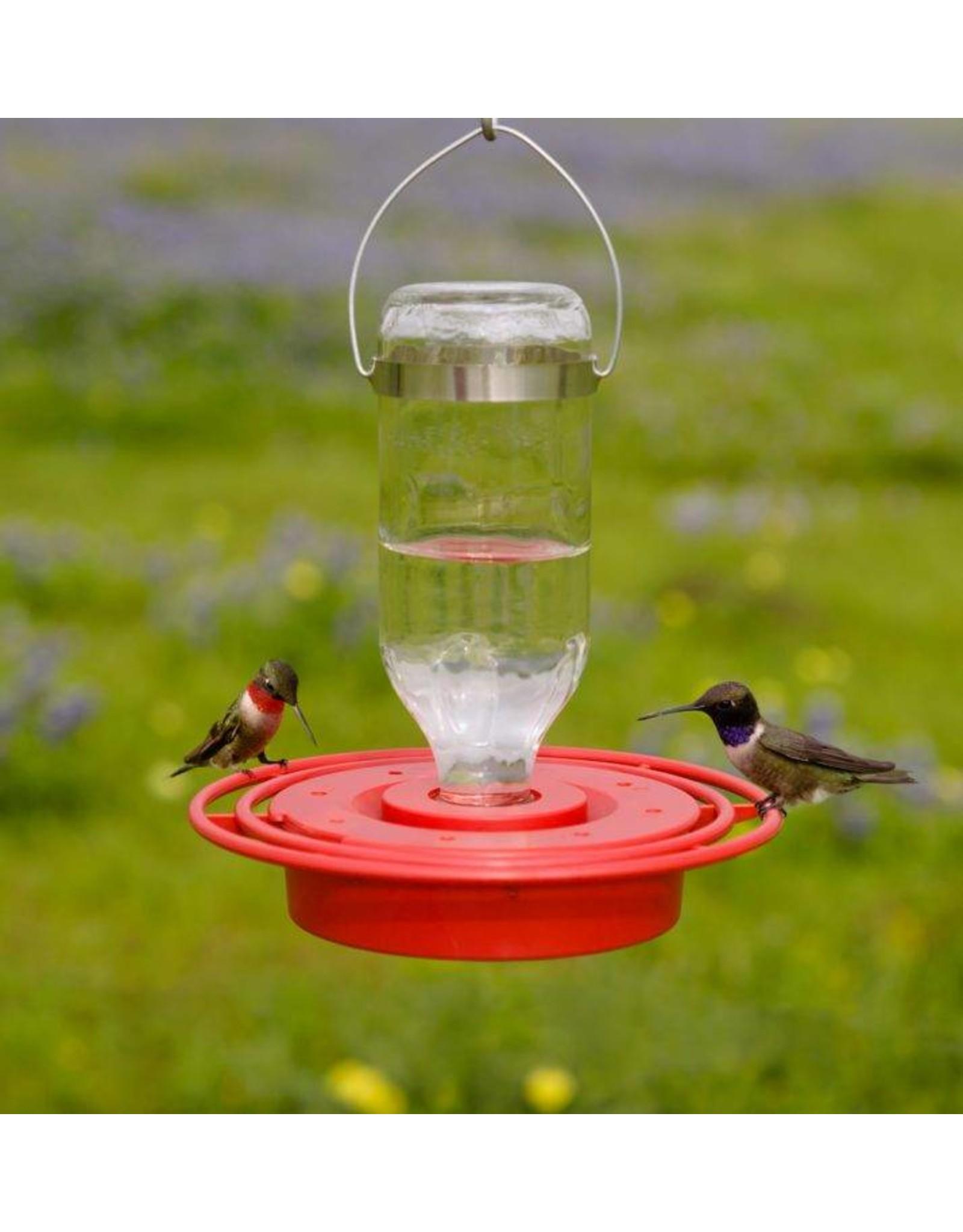 Hummingbird feeder, 8oz., Glass Bottle, BEST8