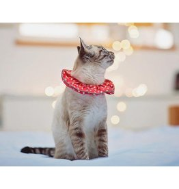 Cat Collar, Quick Release and Birdsbesafe Cover Combined