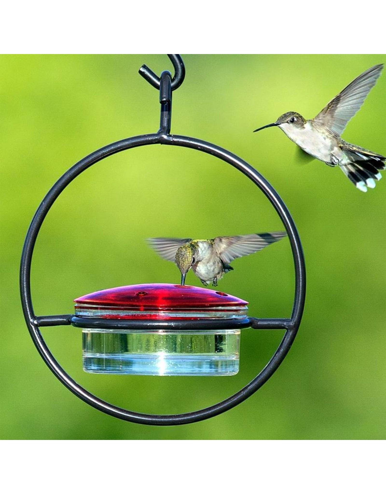 Hummingbird Feeder, Sphere, Hummble Slim, M045301