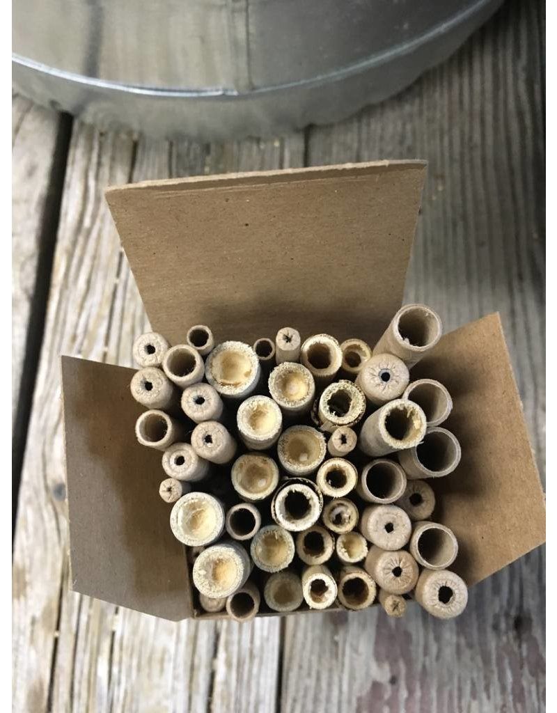 Mason Bee, Pollination Pack for wild bees, 50 assorted tubes