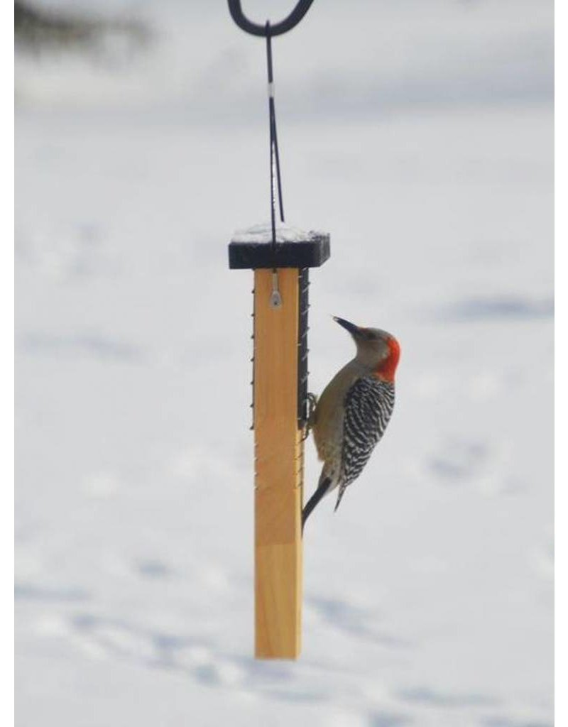 Suet Feeder, Tail Prop for Woodpecker, Cedar, NWCWF1