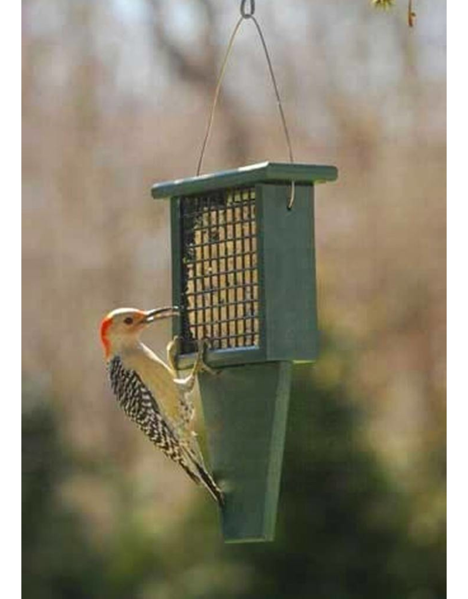 Suet Feeder, Tail board, Recycled, tail prop, SERUBSF100H