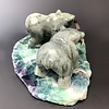 """- """"Luke and Wes"""" - The Soapstone Hungry Bears onFluorite (#116)"""