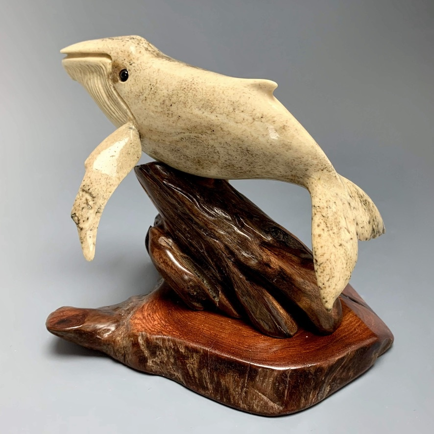 Harmony - The Humpback Whale Carved from Fossilized Walrus Jawbone Sculpture #227