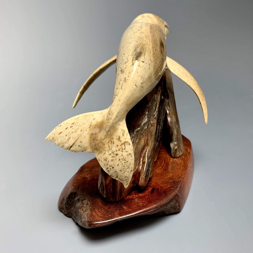 Helen - The Humpback Whale Carved from Fossilized Walrus Jawbone Sculpture #228