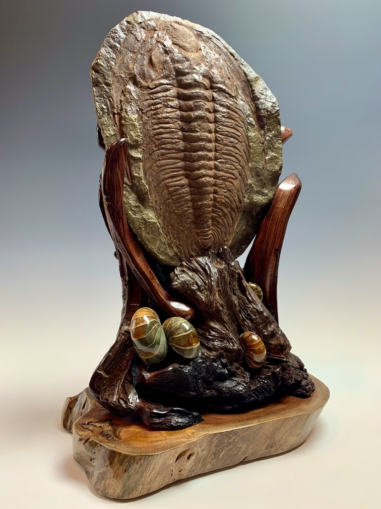 - Trilobite Fossil on Rosewood #303