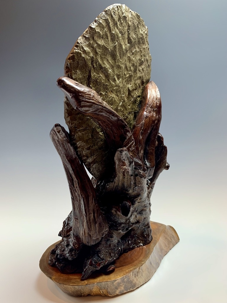 Trilobite Fossil on Rosewood #303
