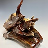 Ice Age Life - Fossilized Mammoth Ivory #304-SOLD