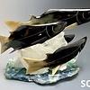 -Spawning Salmon #220