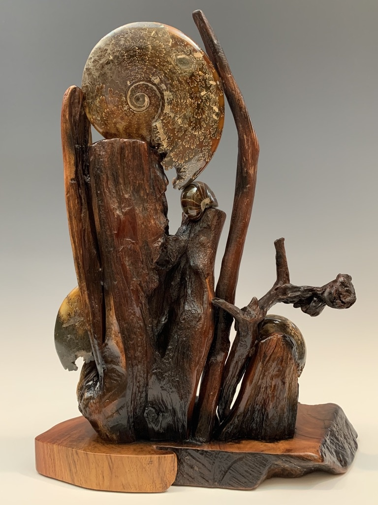 - Ammonite and Rosewood #321