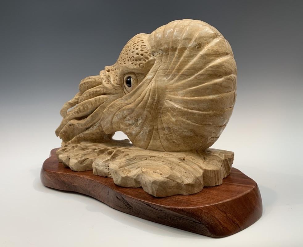 - Ammonite - Marble #367