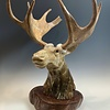 Moose - Marble Sculpture #393 - SOLD