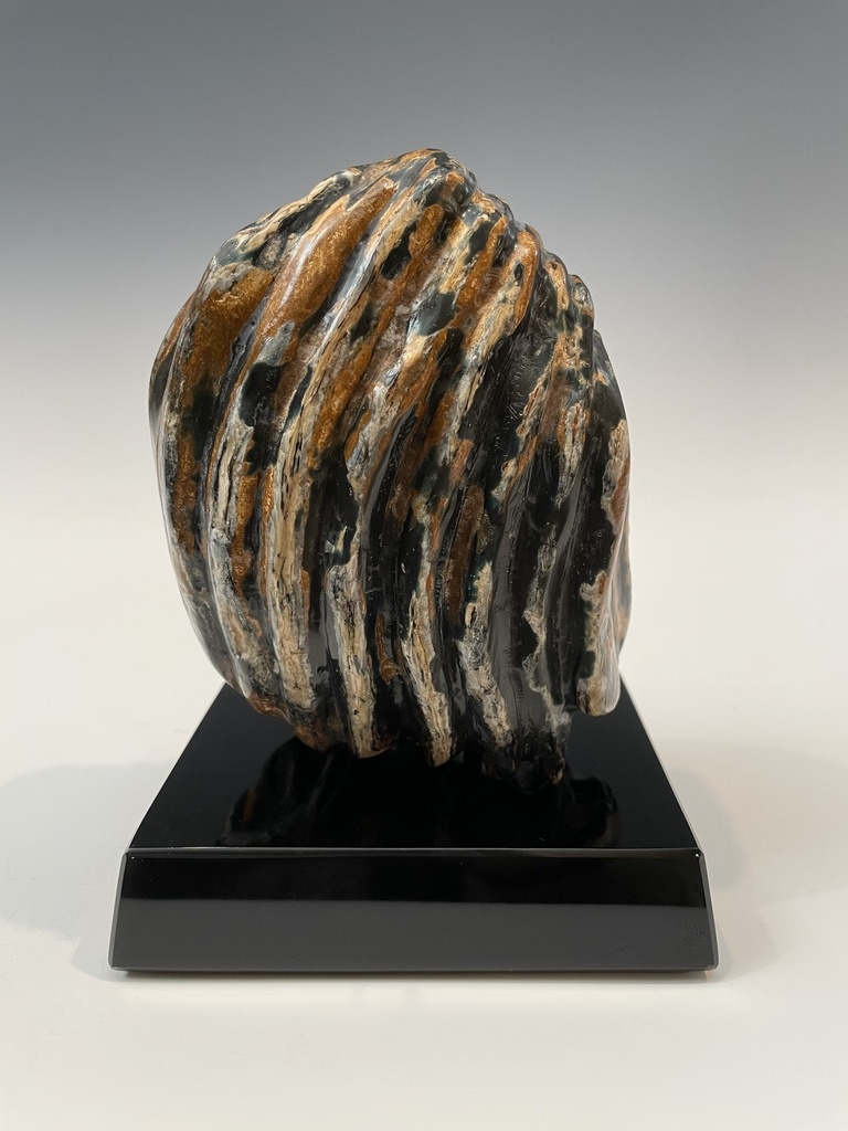Fossil Mammoth Molar #491